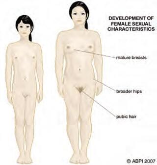 Nudist hardon pix